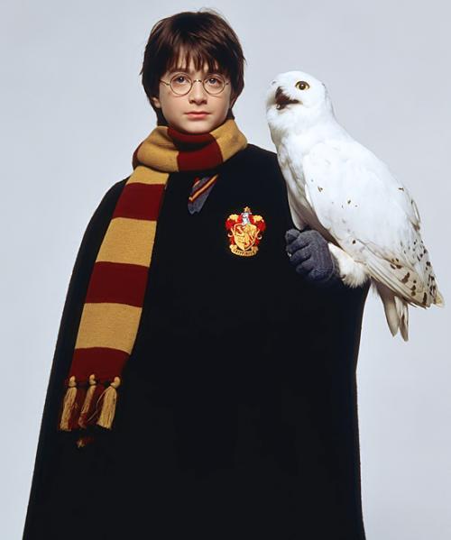 Скачать фильм Гарри Поттер и Дары Смерти Часть I 2010